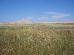 ED-Oglala-National-Grassland-Nebraska-USA-near-Toadstool-Geologic-Park-image-released-to-public-domain-by-author-Brian-Kell-300x225